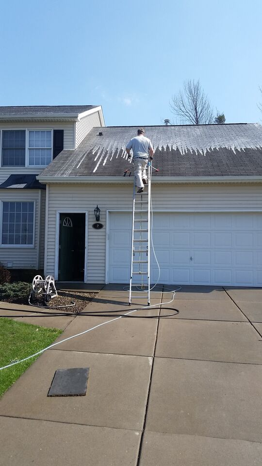 Roof Cleaning In North Boston New York By Carolina Clean